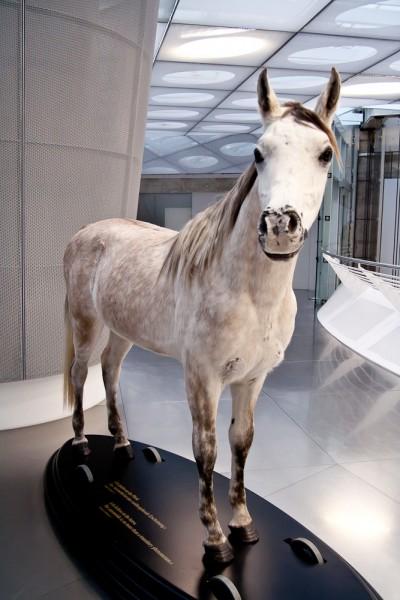 Музей Mercedes. Штуттгарт. Лошадь.